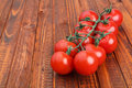 One stem of tomatoes on wooden background Royalty Free Stock Photo