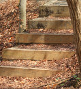 One step at a time wooden steps in the park with leaves Royalty Free Stock Images