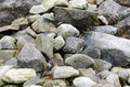 One stone cairn on swedish west-coast