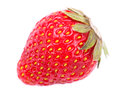 One strawberry macro photoed Royalty Free Stock Photography