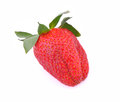 One strawberry on white background single Stock Photos