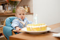 One year old boy looking his birthday cake Stock Image