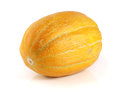 One yellow melon isolated on white background Royalty Free Stock Photo