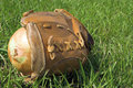 Onion in baseball glove Stock Image