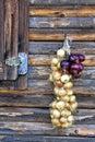 Onion braid hung on a nail Stock Photos