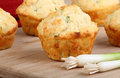 Onion Cheese Biscuits Royalty Free Stock Photo