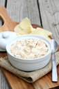 Onion Dip Royalty Free Stock Photo