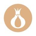 Onion fresh vegetable icon