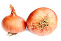 Onion fresh on white background Stock Image