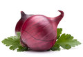 Onion vegetable bulb and parsley leaves still life isolated on white background cutout Royalty Free Stock Photos