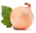 Onion vegetable bulb and parsley leaves still life on white background cutout Stock Photo