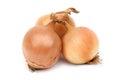 Onions Royalty Free Stock Photo