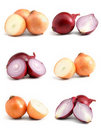 Onions collection Royalty Free Stock Photos
