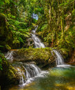 Onomea Falls Royalty Free Stock Photo