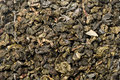 Oolong tea close up background Royalty Free Stock Photos