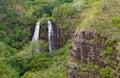 'Opaeka'a Falls Royalty Free Stock Photos