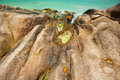 Opal waterponds on granite rocks praslin seychelles Royalty Free Stock Photos