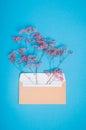 Open beige postal envelope with pink gypsophila flowers inside