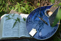 An open bible and a blue mandolin resting on a log