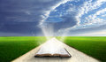 Open bible in field. Royalty Free Stock Photo