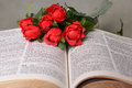 Open bible with red roses close up of and greenery on a light green background Royalty Free Stock Photography