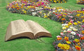 Open bible spiritual tranquility paradise park photo of an with and flowers ideal for peace marriage vows etc Royalty Free Stock Photography