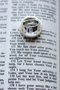 Open Bible with wedding rings Stock Image