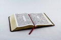 Open bible on white background king james a Stock Images