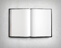 Open blank textbook on white stucco wall