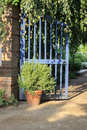 Open Blue Gate in Garden with Hanging Ivy and Potted Plant Royalty Free Stock Photo
