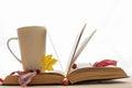Open book and a cup of tea Stock Photos