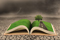 Open book d green tree illustration top dry land stormy clouds background Royalty Free Stock Photo