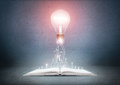 Open book and glowing light bulb over it. Knowledge, education concept Royalty Free Stock Photo