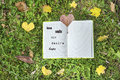 Open book on a green grass background  with autumn leaves Royalty Free Stock Photo
