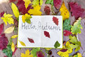 Open book surround by leafs with hello autumn sign Royalty Free Stock Photo