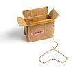 Open cardboard packaging and a gold chain in a heart shape.