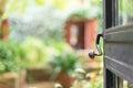 Open door with garden. Royalty Free Stock Photo