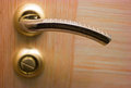 Open door with golden handle front view selective focus on shallow dof Royalty Free Stock Photography