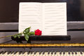 Open empty notes paper with red rose on vintage piano Royalty Free Stock Photo