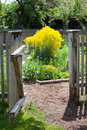 Open gate to a secret garden an wooden and dirt path Royalty Free Stock Photo