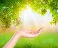 Open Hand  Over Nature Backgro...