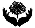 Open hands representing save trees environments themed illustration Stock Photography