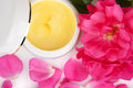 Open jar with the cosmetic cream and rose petals on white Royalty Free Stock Photos