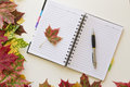 Open notebook, framed with autumn leaves on white background. Flat lay. Top view. Empty copy space for text