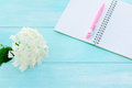 Open notebook with pink pen, coffeecup and hydrangea Royalty Free Stock Photo