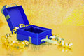 Open present box on golden background beautiful shining surface Royalty Free Stock Image