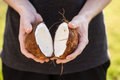 Open raw coconut Royalty Free Stock Photo