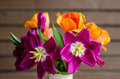 Open tulips Royalty Free Stock Photo