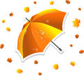 Open umbrella and swirling leaves Royalty Free Stock Photos