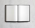 Open white textbook on concrete. 3d render
